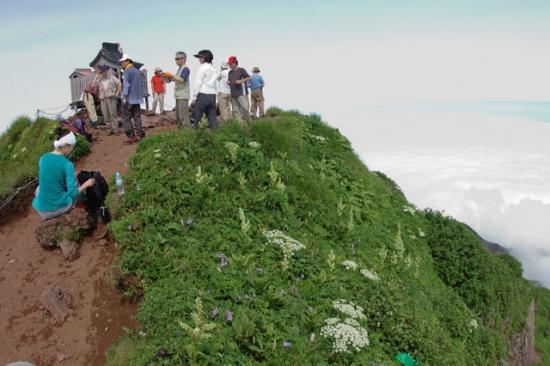 利尻岳山頂